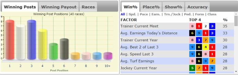 Pferde Rennen Profil